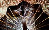 Организаторы Евровидения покажут вместо конкурса специальное шоу
