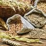 Россия приостановила экспорт зерна за пределы ЕАЭС