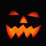 Очаровательные монстры: животные встречают Хэллоуин (ФОТО, ВИДЕО)