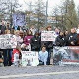 В Москве на митинг в защиту животных пришло более тысячи человек