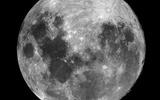 Уфолог заявил, что Луна кишит пришельцами, и представил фото-доказательство