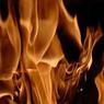 В Москве горит завод НАМИ