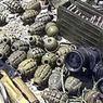 В Ингушетии откопали крупный оружейный клад