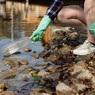 Службам доставки предложили перейти на биоразлагаемый пластик но не посчитана цена перехода