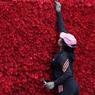 Построенная в Эквадоре пирамида из 546 364 роз побила рекорд Гиннеса