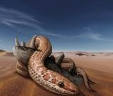 Ученые пролили свет на загадку исчезновения лап у змей