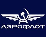 «Аэрофлот» отсудил у авиадебошира рекордную сумму