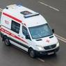 Число заразившихся коронавирусом в России выросло до 63 человек