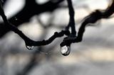 Погода в Москве побила очередной температурный рекорд
