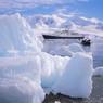 Освобождение из ледового плена обошлось в более $1,5млн