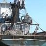 Украина выставит российское судно «Норд» на аукцион