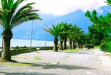 В Абхазии выявили первого туриста с коронавирусом