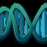 """Ученые полагают, что для идеальной памяти человеку нужно """"отключить"""" некоторые гены"""