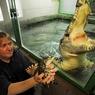 Цены на продовольствие: спасет ли нас мясо крокодила?