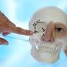 Стволовые клетки: у дамы вырос на спине нос (ФОТО)