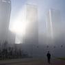 """Экологи: """"Режьте нас на части, но воздух в Москве чист"""""""