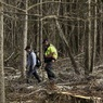 Потерявшийся в лесу 3-летний мальчик выжил благодаря дружелюбному медведю