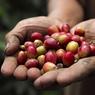 Топ-5 полезных свойств кофе (ФОТО)