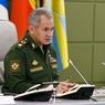 Шойгу доложил Путину о выводу российских войск из Сирии