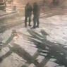Обнародовано видео драки, приписываемой Виторгану-младшему и Богомолову