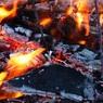 Медведев утвердил запрет на выжигание травы и разведение костров возле дорог