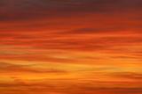 Буря мглою Солнце кроет: очередная вспышка (ФОТО, ВИДЕО)