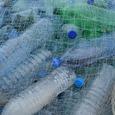 Способный спасти планету от пластика фермент обнаружили ученые