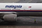 Пять стран подписали меморандум о финансировании преследования виновных в гибели MH17