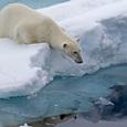 Ученых озадачили странные изменения в Северном магнитном полюсе Земли