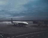 Приостановка авиасообщения с Великобританией снова продлевается