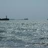 Наплевать на море: крымский врач рассказал о вероятности заражения Covid-19 на пляже и в море