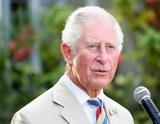 Не король, так хоть принц-регент: королева Елизавета II задумала передать власть сыну