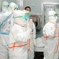 Главврача Боткинской больницы в Петербурге уволили после побега пациентов