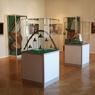 Выставки искусства Татарстана открылись в Москве