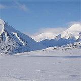 Семь тысяч человек требуют вернуть России Аляску
