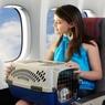 Российских туристов могут вернуть домой самолетами МЧС