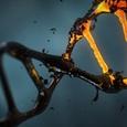 """Ученым впервые удалось """"починить"""" ДНК эмбриона в утробе матери"""