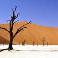 Ученые предупредили об аномально жаркой следующей пятилетке