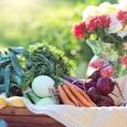 Ученые рассказали, какая еда поможет защитить организм от рака