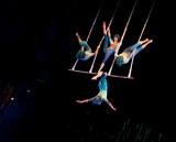 Знаменитый Цирк Дю Солей оказался на грани банкротства