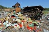 Петербургские депутаты просят Путина отменить указ об уничтожении продуктов