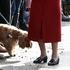 Каких людей чаще всего кусают собаки, рассказали учёные